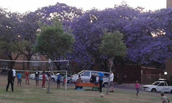 Monday evening sports ministry at Jacaranda Park, Sunnyside, Pretoria
